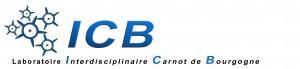 Logo plus moderne - juin 2010 proposition 9 bleu blanc